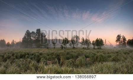 Summer misty morning, misty morning on the lake