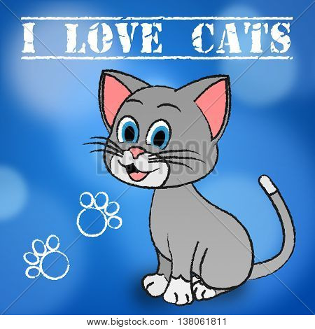 Love Cats Shows Pet Loved And Heart