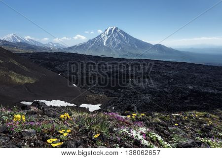 Kamchatka beautiful volcanic landscape - summer view of Bolshaya Udina Volcano. Eurasia Russian Federation Far East Kamchatka Peninsula Klyuchevskaya Group of Volcanoes.