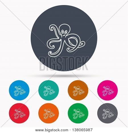 Octopus icon. Ocean devilfish sign. Icons in colour circle buttons. Vector