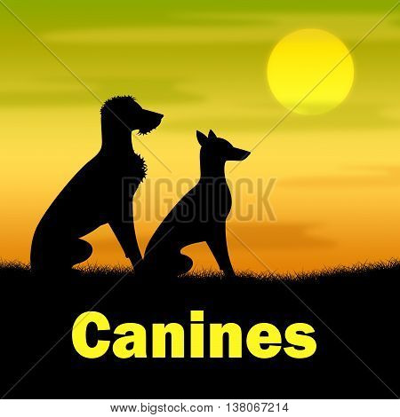 Canines Word Indicates Dog Field And Puppy
