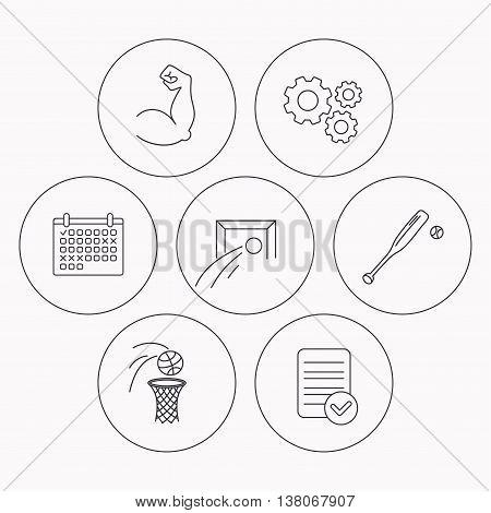 Baseball, football and basketball icons. Biceps linear sign. Check file, calendar and cogwheel icons. Vector