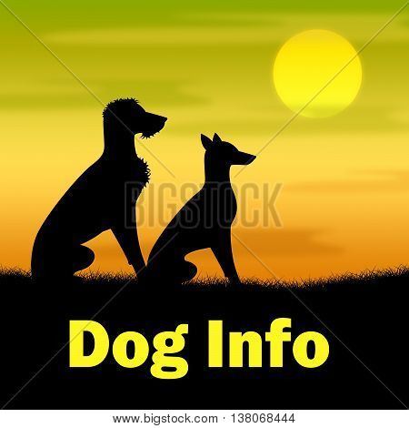 Dog Info Indicates Dogs Canine And Landscape