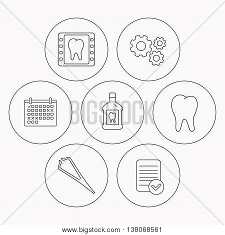 Mouthwash, tooth and dental x-ray icons. Tweezers linear sign. Check file, calendar and cogwheel icons. Vector