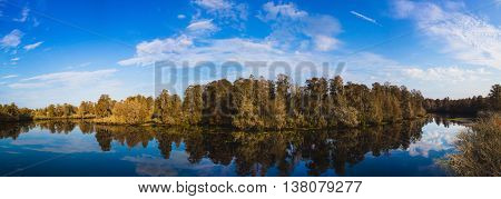 Panorama from the watchtower in Lettuce Lake State Park in Tampa, Florida.