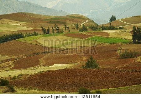 Coloridos campos en Andes, Perú