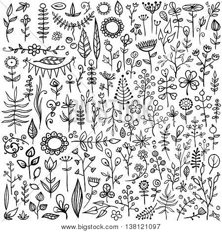 More than 100 creative color floral elements. Really big hand-drawn set of different flowers, leafs, berries, and other nature elements.