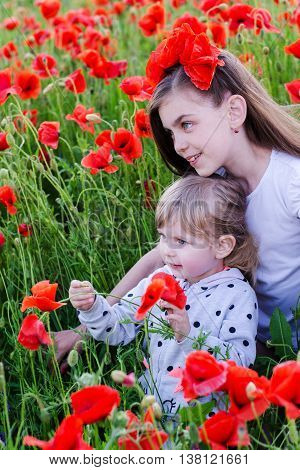 portrait of beautifu children on poppy flower field