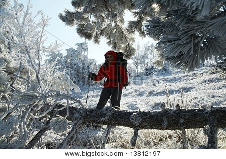Men in the beautiful winter forest