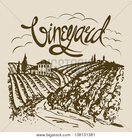 Hand drawn vineyard landscape. Vintage vector illustration.