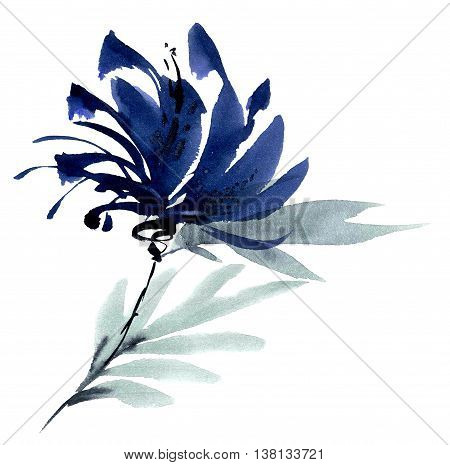 Blue flower. Watercolor and ink painting in style gohua sumi-e u-sin. Oriental traditional painting.