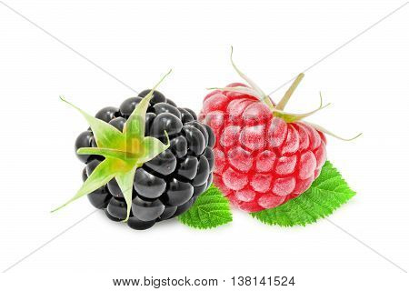 Two fresh ripe blackberry and raspberry berries with leaves isolated on white background. Design element for product label, catalog print, web use.