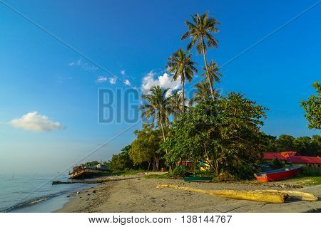 Isolated Palm on a tropical beach in Labuan Island at Labuan Pearl of Borneo,Malaysia