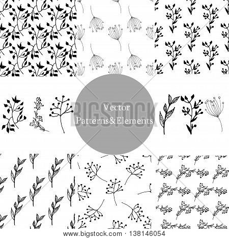 Set of hand drawn seamless patterns and leafy elements