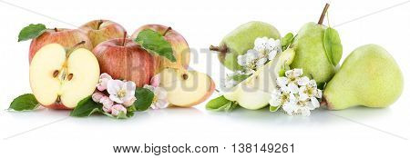 Apple And Pear Apples Pears Fruit Red Green Fresh Fruits Slice Isolated On White
