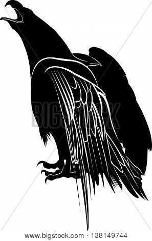 eagle. Eagle Silhouette on white background. Hunting eagle vector silhouette
