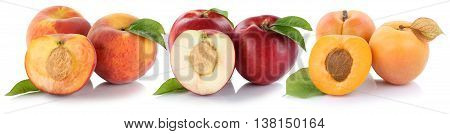 Peach Nectarine Apricot Peaches Nectarines Fruit Fresh Fruits Isolated On White