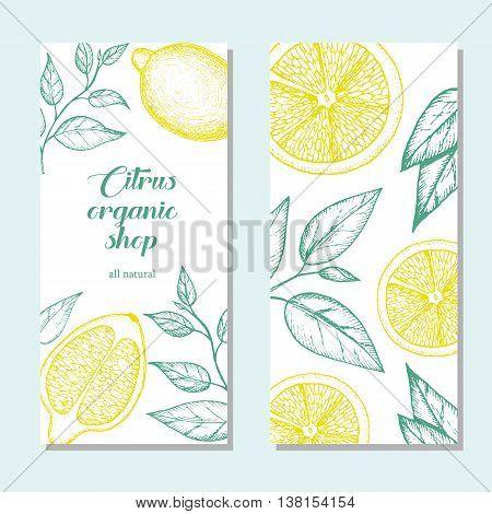 Citrus vertical banner collection. Lemons hand drawn in ink illustration. Vector vintage illustration. Line art graphic. Lemons flyer set.