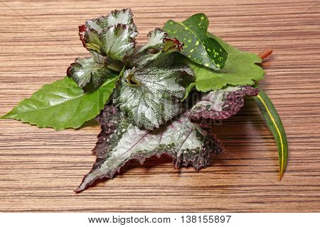 Different leaves on wooden table