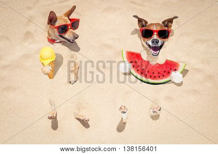 Couple Of Dogs At The Beach And Watermelon