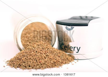 Celery Powder And Shaker