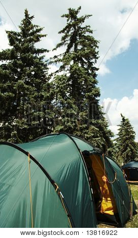 Tents in forest camping