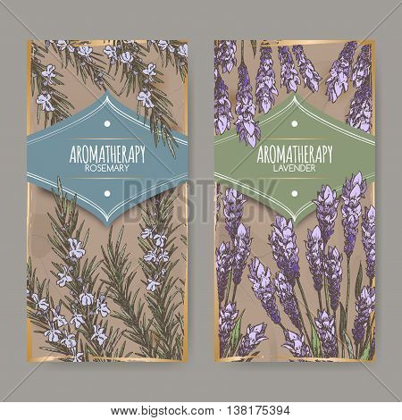 Set of two labels with lavender and rosemary color sketch on vintage background. Aromatherapy series. Great for traditional medicine, perfume design, cooking or gardening labels.