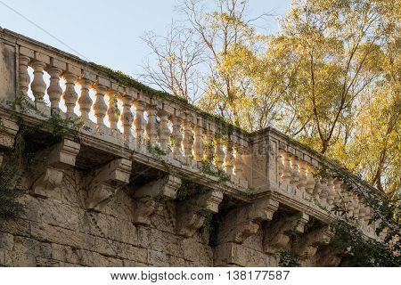 Yellow limestone balcony in warm summer evening sun overgrown with ivy with trees in background. June 2016 Attard Malta Europe.