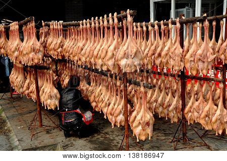 Jiu Chi Town China - October 25 2012: Woman checking rows of dried pressed ducks hanging from wooden poles outside her family-run poultry shop