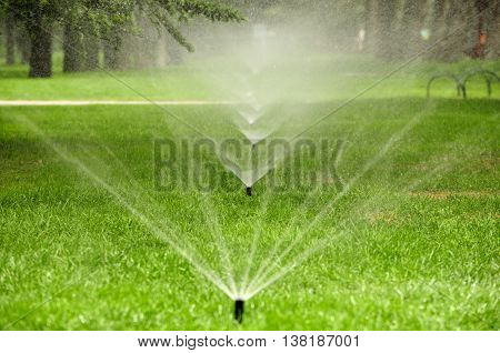 An in ground water sprinkler spraying water onto green grass within the Temple of Heaven scenic area in Beijing China.
