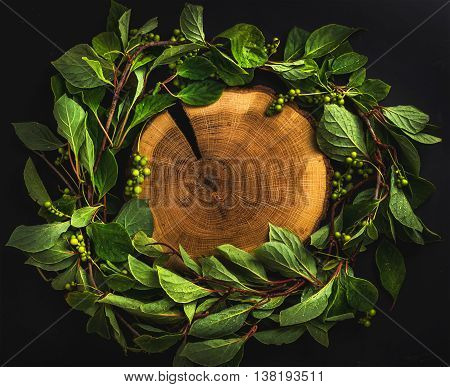 Background with Schisandra chinensis wreath around wooden board on dark, top view, copy space