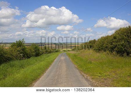 Scenic Rural Road
