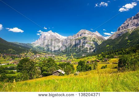 View to famous Grindelwald valley green forest Alps chalets and Swiss Alps (Schreckhorn Berglistock and Wetterhorn) in the background Berner Oberland Switzerland Europe.