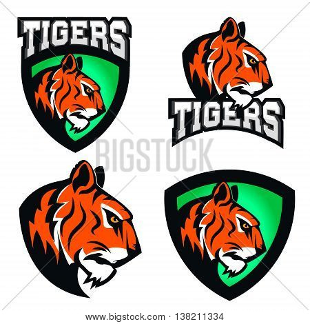 Tigers. Sport team or club logo template. Vector design element for logo label emblem sign badge.