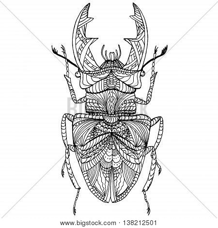 Black and white hand drawn zentangle stylized bug. Doodle ethnic patterned vector bug