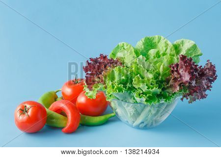 fresh organic vegetables for salad on blue