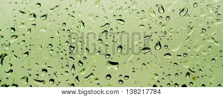 Rainy wet green eco abstract seasonal summer natural blurred background with water drops