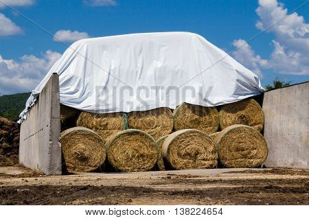 Rolls of hay stacked against the blue sky