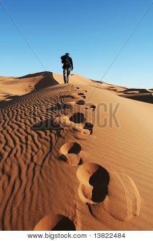 Sand Wüste