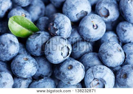 Blueberry background