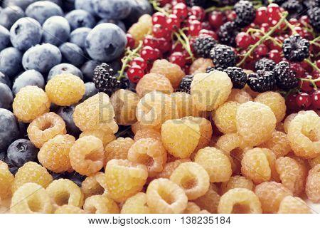Fresh berries assortment , close up
