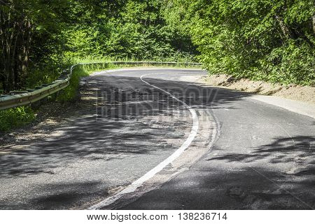 The winding section of forest road on a clear day