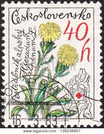 MOSCOW RUSSIA - JANUARY 2016: a post stamp printed in CZECHOSLOVAKIA shows a flower with the inscription