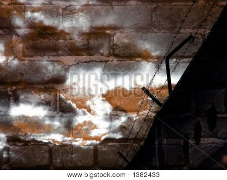 a barbed wire against background of a