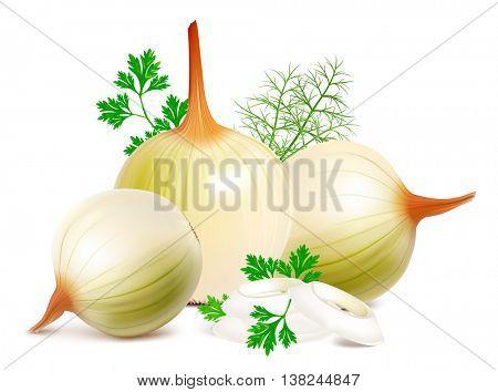 Onions fresh herbs. Fully editable handmade mesh. Vector illustration.