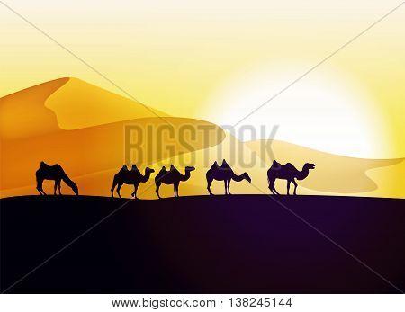 Caravan of camels in the desert. Vector illustration