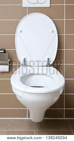 Modern white toilet bowl in the bathroom