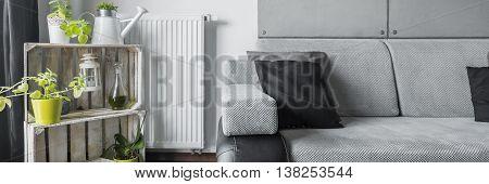Creative Decorations And Grey Sofa