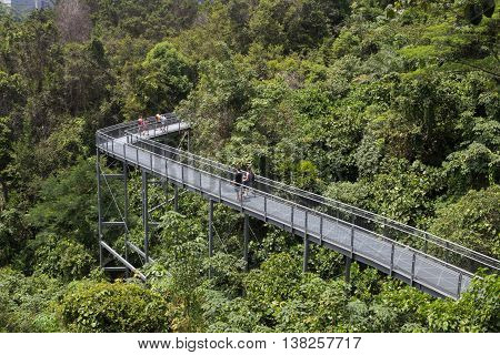 Singapore, Singapore - February 01, 2015: People enjoying a walk on the canopy walkway in the Southern Ridges.