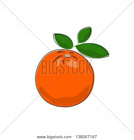 Citrus Orange Isolated on White Background, Tropical Fruit Orange, Vector Illustration